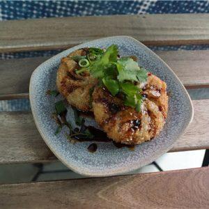 fried-dumplings